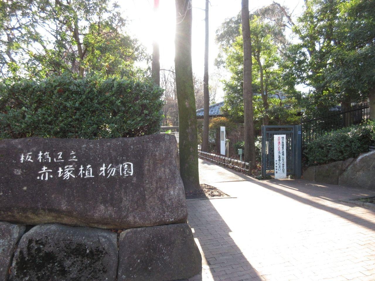 東京大仏の近くにあります。この植物園は武蔵野の面影を色濃く残す赤塚の丘陵地を活用して作られています。周りが閑静な住宅街なので落ち着いた場所でありますが、園内は自然豊かで更に落ち着いた空間なので、ゆったりとした時間が流れます。多種多様な植物が揃っているので散策にも最適な場所です。また、東京大仏と合わせてみるのもおススメです。