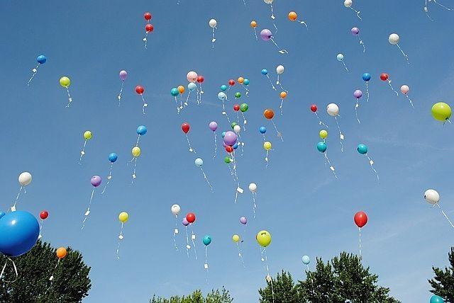 みなさまこんにちは。 9月22&23日に大東文化大学第一高等学校で第56回雄飛祭が開催されます。