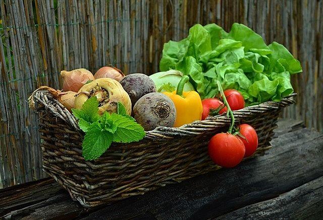 みなさまこんにちは。 板橋の農業を知ることのできるイベントです。 新鮮な野菜&果実の展示と販売、古くから伝わる郷土芸能も見ることができます。 まずは会場マップなどから紹介します。
