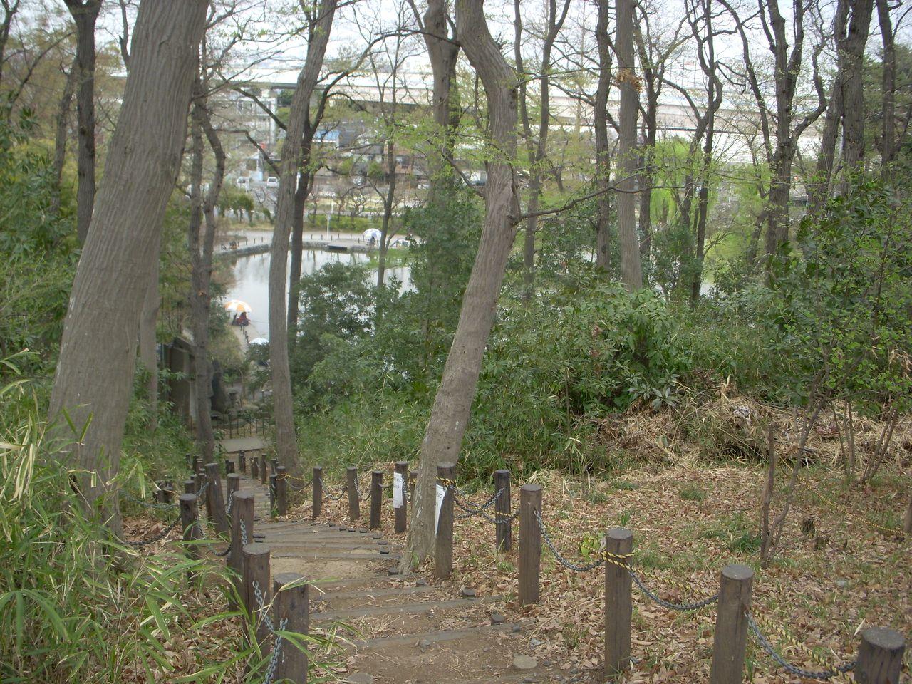 《赤塚城跡~赤塚溜池公園の通路》 西高島平駅から徒歩の方、バス利用の方はこちらの方が早く着きます