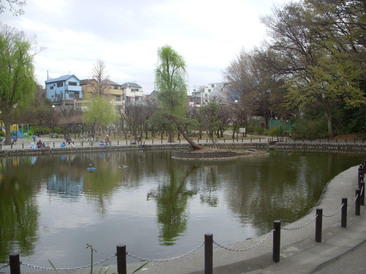 板橋区赤塚にある「赤塚溜池公園」って知ってる?